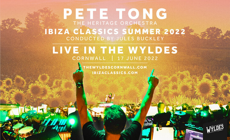 pete tong live in the wyldes